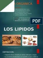 LOS LIPIDOS UTP EXPOSICION GRUPO.pptx