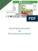 Guia Forestal Silvicultura Com Unit Aria 0