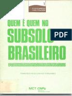 Quem é quem no subsolo brasileiro