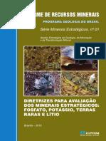 Diretrizes de avaliação dos minerais estratégicos