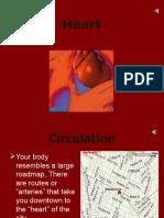 blood & circulation