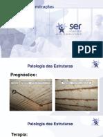 WEB IV patologia