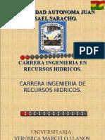Perfil D. Proyecto. Ariel Huanaco Chiri