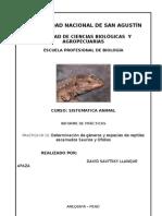 Practica Nº10 Determinación de géneros y especies de reptiles escamados Saurios y Ofidios