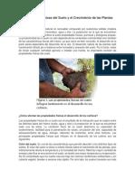 3 Propiedades Físicas del Suelo y el Crecimiento de las Plantas
