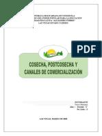 COSECHA, POSTCOSECHA Y CANALES DE COMERCIALIZACIÓN (YONEY MANZANO_ALFEB).docx