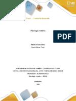Fase 1 cuadro sinoptico teorias del desarrollo (1)
