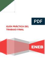 Guía Práctica del Trabajo Final - CONTABILIDAD