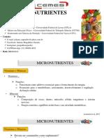 Aulas 5 e 6 Micronutrientes