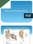 Nervio Vestíbulo Coclear