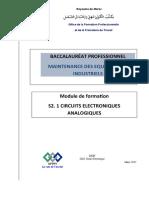 BAC PRO MI S2.1 Circuits électroniques analogiques.docx