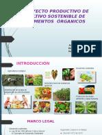 DIAPOSITIVAS PROYECTO ALIMENTOS ORGANICOS.pptx