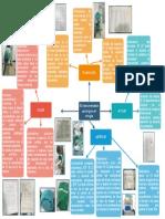 mapa mental funciones del instrumentador HUS.pdf