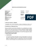 GUIA MODELO DE INFORME FINAL NEUROPSICOLOGIA ROB (2)