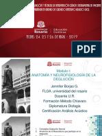 -- Jueves 25 Abril -   MODULO I ANATOMIA - FISIOLOGIA PDF.pdf