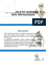 EL ESQUELETO HUMANO Y SUS PATOLOGÍAS