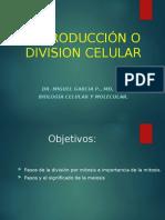 División celular. 3.ppt