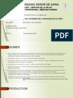 DIAPOS DE COVID-19 IM.pptx