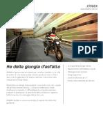 brochure yamaha.pdf