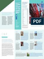 UNDP-Brochure-2014_FR