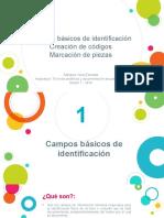 S7. Campos básicos identificación.pdf