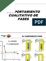 Comport a Mien To Cualitativo de Fases (Repsol YPF)