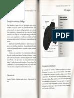 128-129.pdf