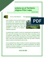 tindigena.pdf