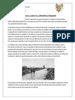 INGENIERIA AMBIENTAL hiroshima