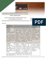 4. articulación del juzgador con la PPDNNA m1t6a4