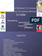 Strategies Related to Cellular Services and Consumer Behavior