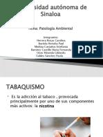 patologia ambiental