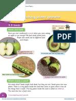 ch 1 Investigating plant growth.pdf