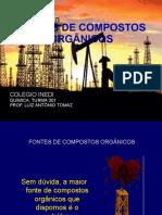 20090304061946_inedi.fontes.de.compostos.organicos.ds.ppt