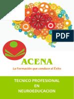 Info_Tecnico_Neuroeducacion