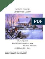 proiect_tematic_iarna[1