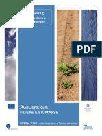 5_Agroenergie-filiere-e-biomasse