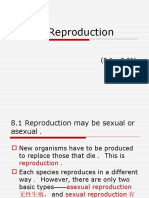 8.Reproduction(1)