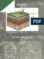 FACTORES Y PROCESOS FORMADORES DE SUELO
