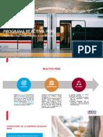 BDO-Peru-Programa-Reactiva-Peru.pdf