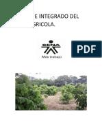 COMIENZO DEL INFORME INTEGRADO DEL AREA AGRICOLA