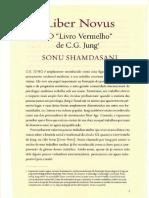 jung complet.compressed.pdf