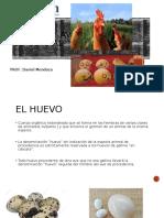 Huevos_y_aves_de_corral_clase_5