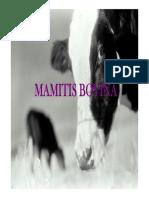 Mamitis rumiantes