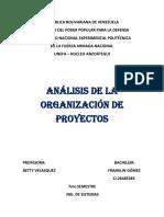 analisis organizacion de proyectos...