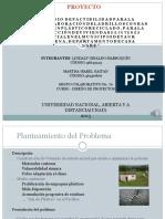 proyectoladrillosdeplstico-130608190057-phpapp02