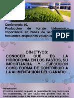 Conferencia 10 n, hidroponia ,pastos..pdf