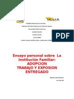 ensayo Sobre la adopción de menores de edad y sus requisitos