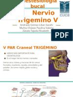 Anestesiología bucal       nervio trigemino (1).pptx