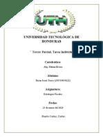 TAREA INDIVIDUAL III PARCIAL - Estrategia fiscal